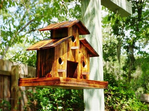 the best bird houses for sale awesome house