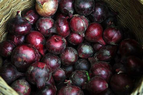 Zemnieku tirdziņš Berga bazārā un rudens ražas svētki ...