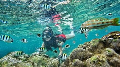 bagi penggemar snorkeling yuk  pantai nglambor jogja