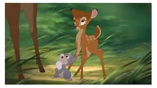 bambi2 - Bambi Photo  ...