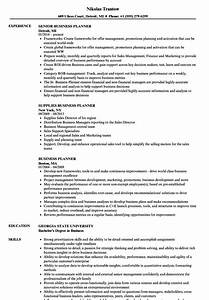 business planner resume samples velvet jobs With business plan writer resume