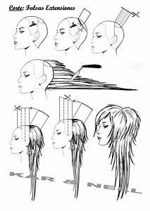 70 Best Diagram Haircut Images On Pinterest
