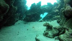 Underwater canyon - Exit - Picture of Marsa Alam, Red Sea ...