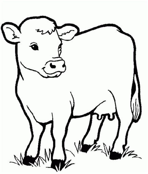animals coloring pages  kids printable coloring