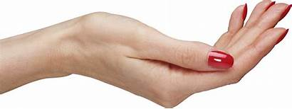 Hand Hands Palm Transparent Icon Res