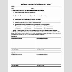 Qualitative And Quantitative Observations Activity Freebie  Elly Thorsen's Middle School