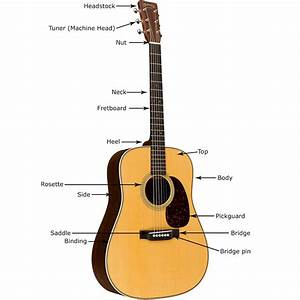 Buying Guide  How To Choose An Acoustic Guitar