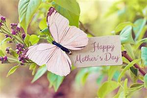 20 Eco-Friendly Mother's Day Gift Ideas - Earth911.com