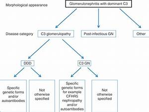 C3 Glomerulopathy  Consensus Report