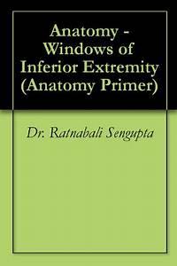 Windows Anatomy