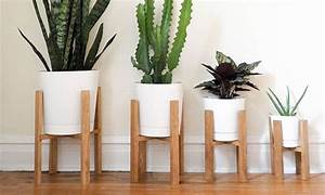 50, Best, Indoor, Plant, Stands, For, All, Plants