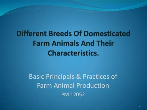 Different Breeds Of Domesticated Farm Animals And Their
