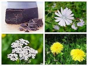 Plante Detoxifiante : plante i alimente amare detoxifiante i digestive ~ Melissatoandfro.com Idées de Décoration