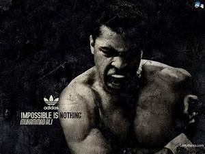 Free Download Boxing HD Wallpaper #6