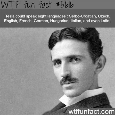 View Tesla 3 Weird Facts Background
