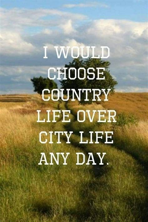 country quotes 25 best country quotes on pinterest funny country quotes country life quotes and redneck
