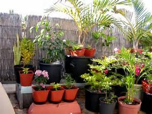 Potager Terrasse Appartement by Comment Cr 233 Er Un Jardinet Sur Son Balcon D Appartement