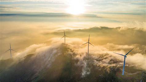 haben windkraftanlagen  indien die raubvoegel