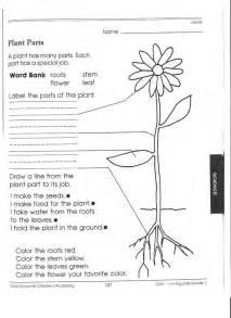 Plants Worksheets 1st Grade Science Worksheets Picking Apart Plants William