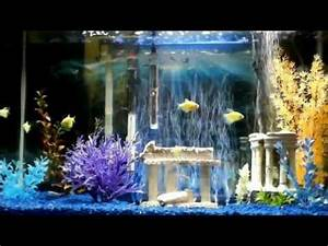 Aquarium In Wand : my 29 gallon aquarium w blue led bubble wand youtube ~ Orissabook.com Haus und Dekorationen