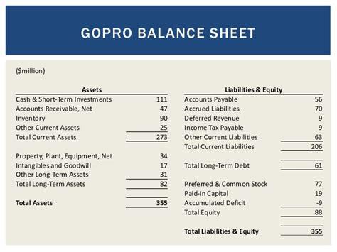 financial statements go pro 1 3