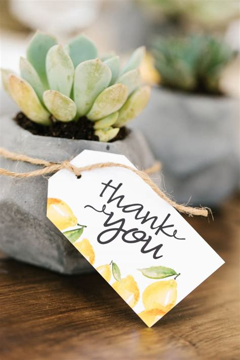 264 Best Images About Teacher Appreciation Gift Ideas On