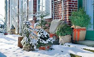 Winterharte Kübelpflanzen Hochstamm : winterharte k belpflanzen pflanzenschutz ~ Michelbontemps.com Haus und Dekorationen