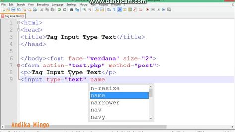 html tag input type text
