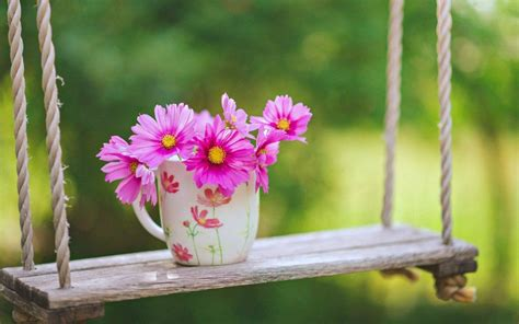 Ideas About Beautiful Flowers Wallpapers On Pinterest Pink