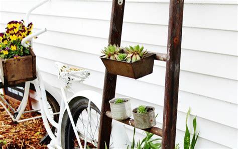 Old Ladder Succulent Garden Plant Stand