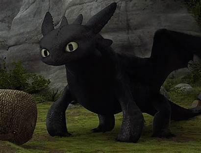 Toothless Dragon Train Httyd Gifs Cool Edit