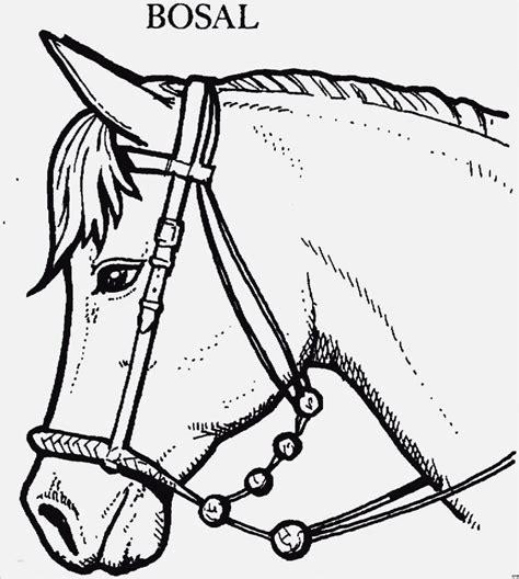 pferdekopf vorlage gut pferd mit bosal ausmalbild