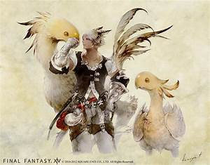 Chocobo And Miqo39te Male Video Games Artwork