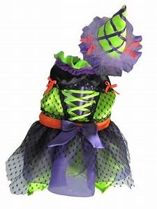 Neon Witch Dog Costume Poochieheaven