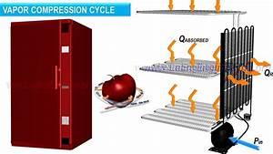 Working Of Refrigerator  U0026 Refrigeration Cylce