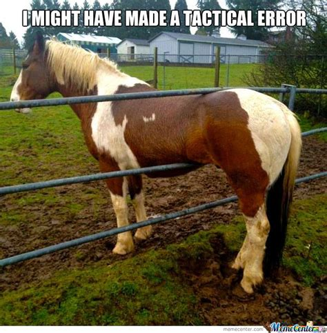 Horse Meme - horse memes about spring google search horse quotes pinterest to be 45 and meme center