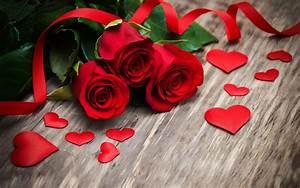 1 Rote Rose Bedeutung : die 73 besten rote rosen hintergrundbilder ~ Whattoseeinmadrid.com Haus und Dekorationen