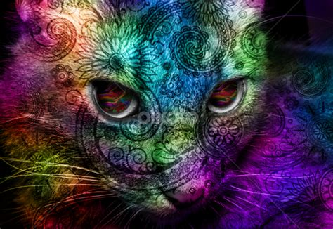 Trippy Animal Wallpaper - trippy pictures of animals