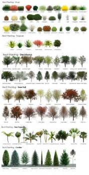 revit rpc tree guide from a revit user archvision