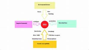 Factors Implicated In The Pathophysiology Of Inflammatory Bowel Disease