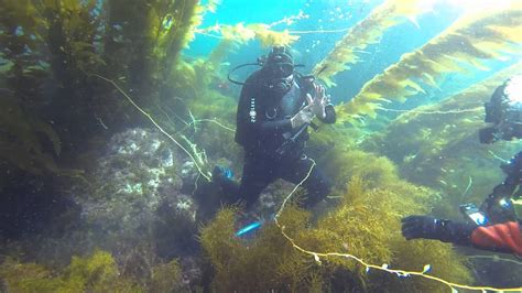 sign  air pressure underwater scuba diving
