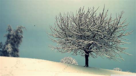Download Vintage Winter Landscape Wallpaper 1920x1080