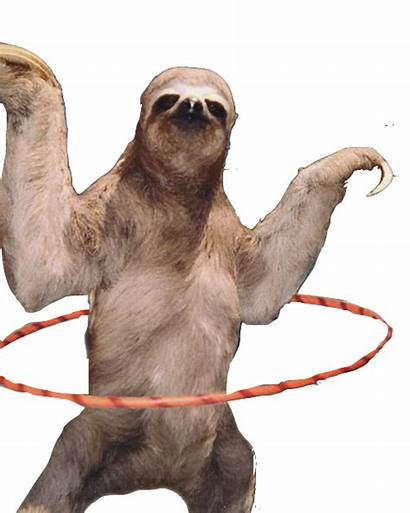 Sloth Transparent Clipart Icon Welcome Clip Library