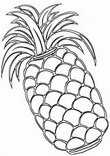 Pineapple Coloring Pages Print sketch template