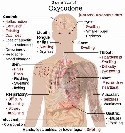 Oxycodone Effects Side Worth Really They