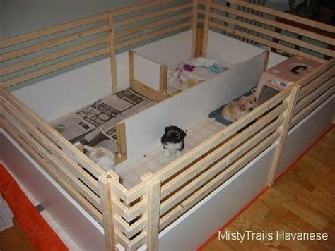 whelping box bedding whelping and raising puppies dogs puppies from