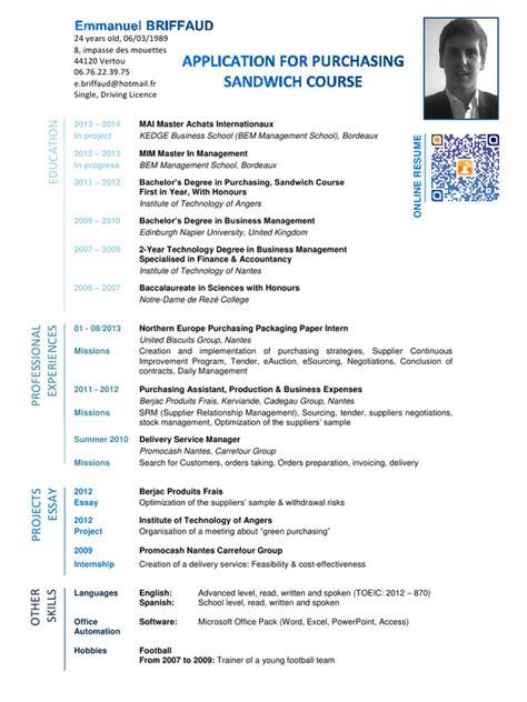 explaining computer skills on a resume cv emmanuel briffaud anglais pdf par briffaud fichier pdf