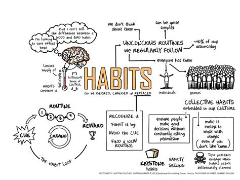 How Habits Are Formed In The Brain by On The Power Of Habit The Timesheet Chronicles