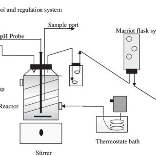 During aerobic respiration, mitochondria use oxygen as the final electron acceptor during the process. (PDF) Liquefaction and methanization of solid and liquid coffee wastes by two phase anaerobic ...