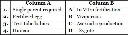 cbse biology reproduction  animals test papers notes